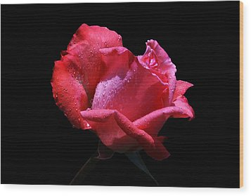 Wood Print featuring the photograph Pink Panther by Doug Norkum