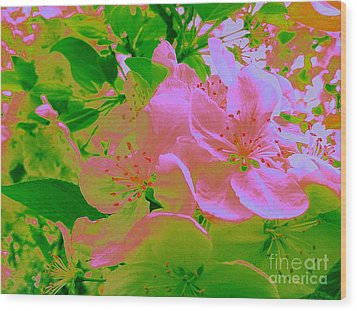 Pink Passion Crabapple Wood Print