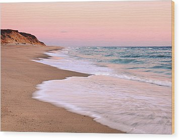 Pink Pastel Beach And Sky Wood Print by Roupen  Baker