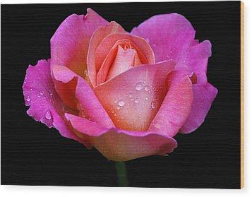 Pink Pearl Wood Print by Doug Norkum