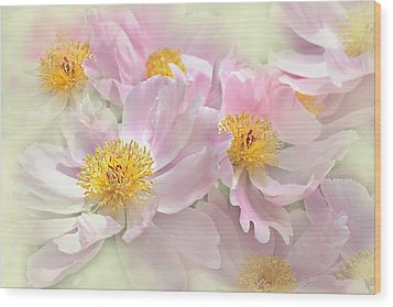 Pink Peony Flowers Parade Wood Print by Jennie Marie Schell