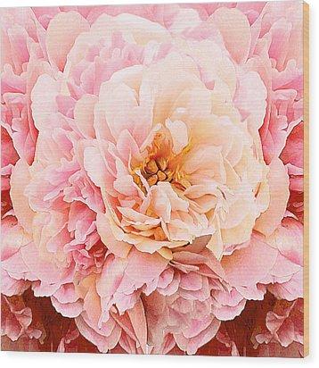 Pink Peony Wood Print by Michele Avanti