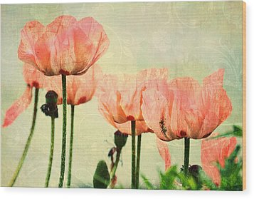 Wood Print featuring the photograph Pink Poppies In The Garden by Peggy Collins