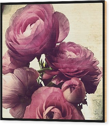 Pink  Ranunculus Wood Print by Heather L Wright