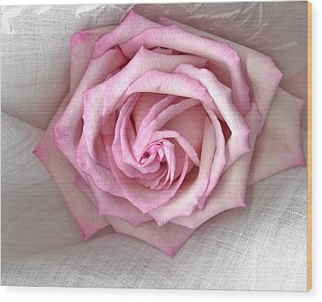 Pink Rose And Linen Wood Print by Sandra Foster
