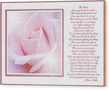 Pink Rose And Song Lyrics Wood Print
