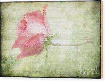 Pink Rose Wood Print by Joan McCool