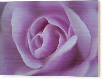 Wood Print featuring the photograph Pink Rose by Phyllis Peterson