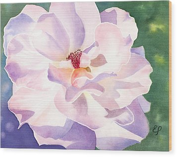 Pink Rose - Transparent Watercolor Wood Print