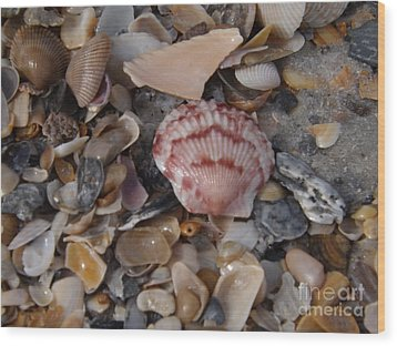 Wood Print featuring the photograph Pink Shell by Brigitte Emme