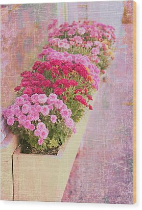 Pink Sidewalk Flowerbox Wood Print