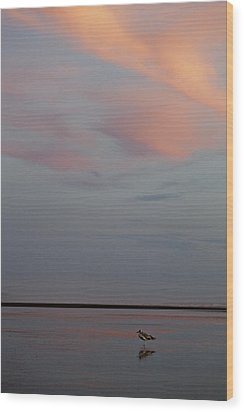 Wood Print featuring the photograph Pink Sky And Sand by Kjirsten Collier