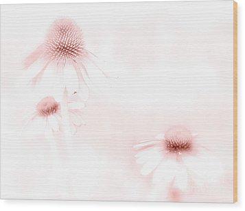 Pink Sonata  Wood Print by Andrea Kollo