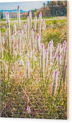 Pink Spiky Flowers With French Handwriting Wood Print by Karen Stephenson