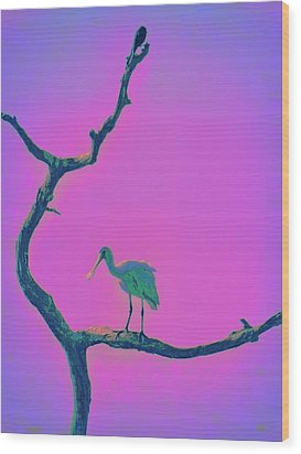Wood Print featuring the painting Pink Spoonbill by David Mckinney