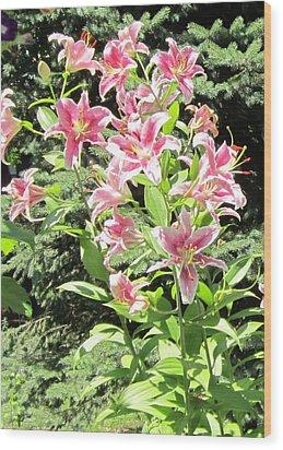 Pink Stargazer Lilies-greeting Card Wood Print