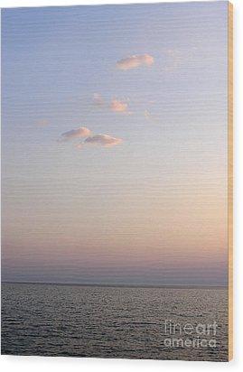 Pink Sunset Wood Print by Zoran Berdjan