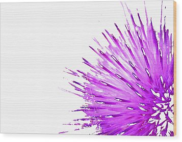 Pink Thistle  Wood Print by Rich Collins
