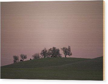Pink Twilight Wood Print by Joel Moranton
