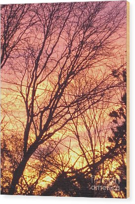 Pink Twilight Wood Print