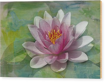 Pink Water Lily Wood Print by Rebecca Cozart