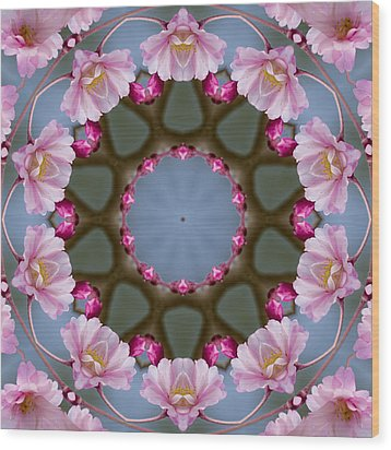 Pink Weeping Cherry Blossom Kaleidoscope Wood Print by Kathy Clark