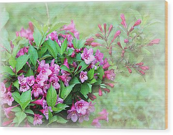 Wood Print featuring the photograph Pink Weigela by Trina  Ansel