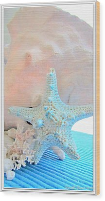 Pink White And Blue Conch And Sea Shells  Wood Print by Danielle  Parent