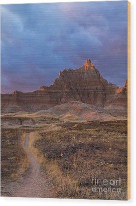 Pinnacle Path Wood Print by Rob Wilson