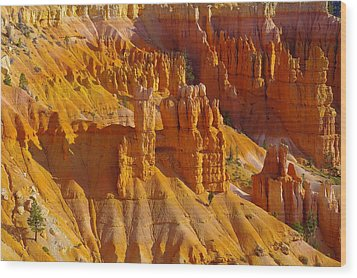Pinnicles At Sunset Point Bryce Canyon National Park Wood Print by Jeff Swan