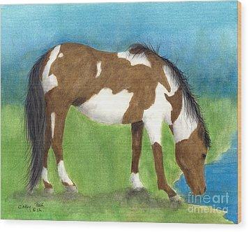 Pinto Mustang Horse Mare Farm Ranch Animal Art Wood Print by Cathy Peek