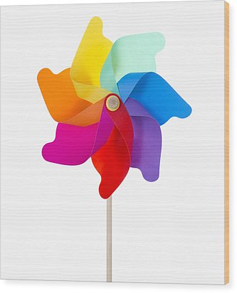 Pinwheel Isolated On White Wood Print by Anna Kaminska