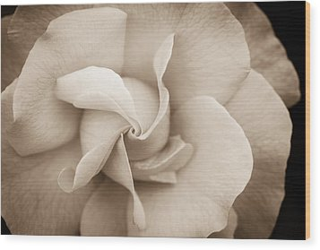 Pinwheel Rose Wood Print