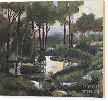 Pipe Creek Falls Wood Print by Charlie Spear