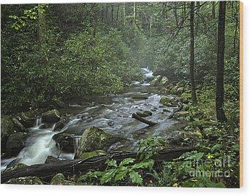 Pisgah Forest  Wood Print