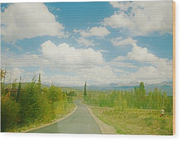 Wood Print featuring the photograph Places To Go And Things To Do by Shirley Heier