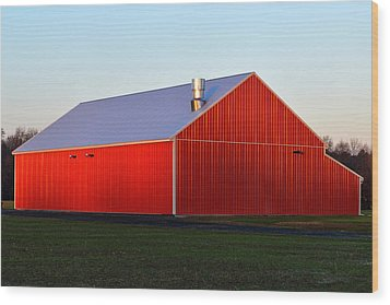 Wood Print featuring the photograph Plain Jane Red Barn by Bill Swartwout