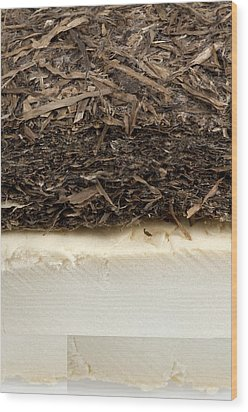 Plant-based Insulating Materials Wood Print by Science Photo Library