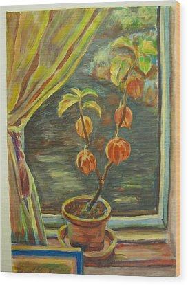Plant In A Window Wood Print by Ellen Howell