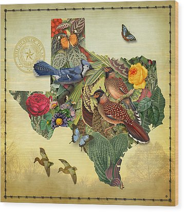 Nature Map Of Texas Wood Print by Gary Grayson
