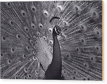 Platinum Wood Print by Lorenzo Cassina