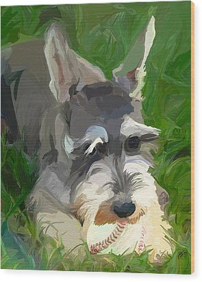 Play Ball Wood Print by Patti Siehien