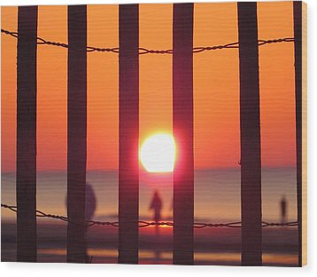 Wood Print featuring the photograph Play Through The Fence by Nikki McInnes