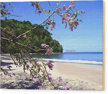 Playa Espadillia Sur Manuel Antonio National Park Costa Rica Wood Print by Kurt Van Wagner