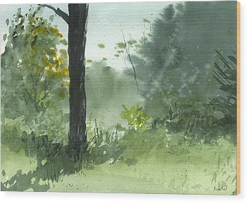 Plein Air 8-1-13 Wood Print by Sean Seal