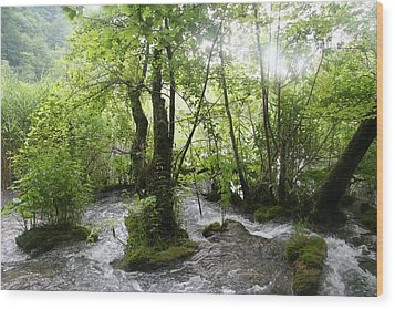 Wood Print featuring the photograph Plitvice Lakes by Travel Pics