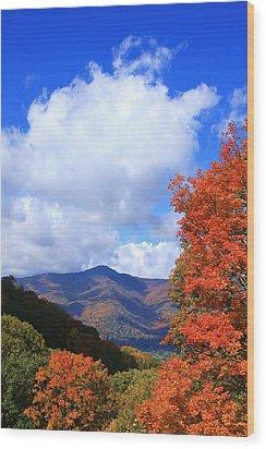 Plott Balsam Mountains Foliage Wood Print by Mountains to the Sea Photo