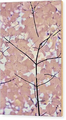 Plum Cream Leaves Melody Wood Print by Jennie Marie Schell