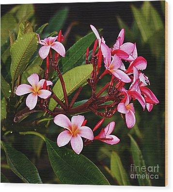 Plumaria In The Rain Wood Print