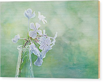 Plumbago Wood Print by Margaret Hormann Bfa